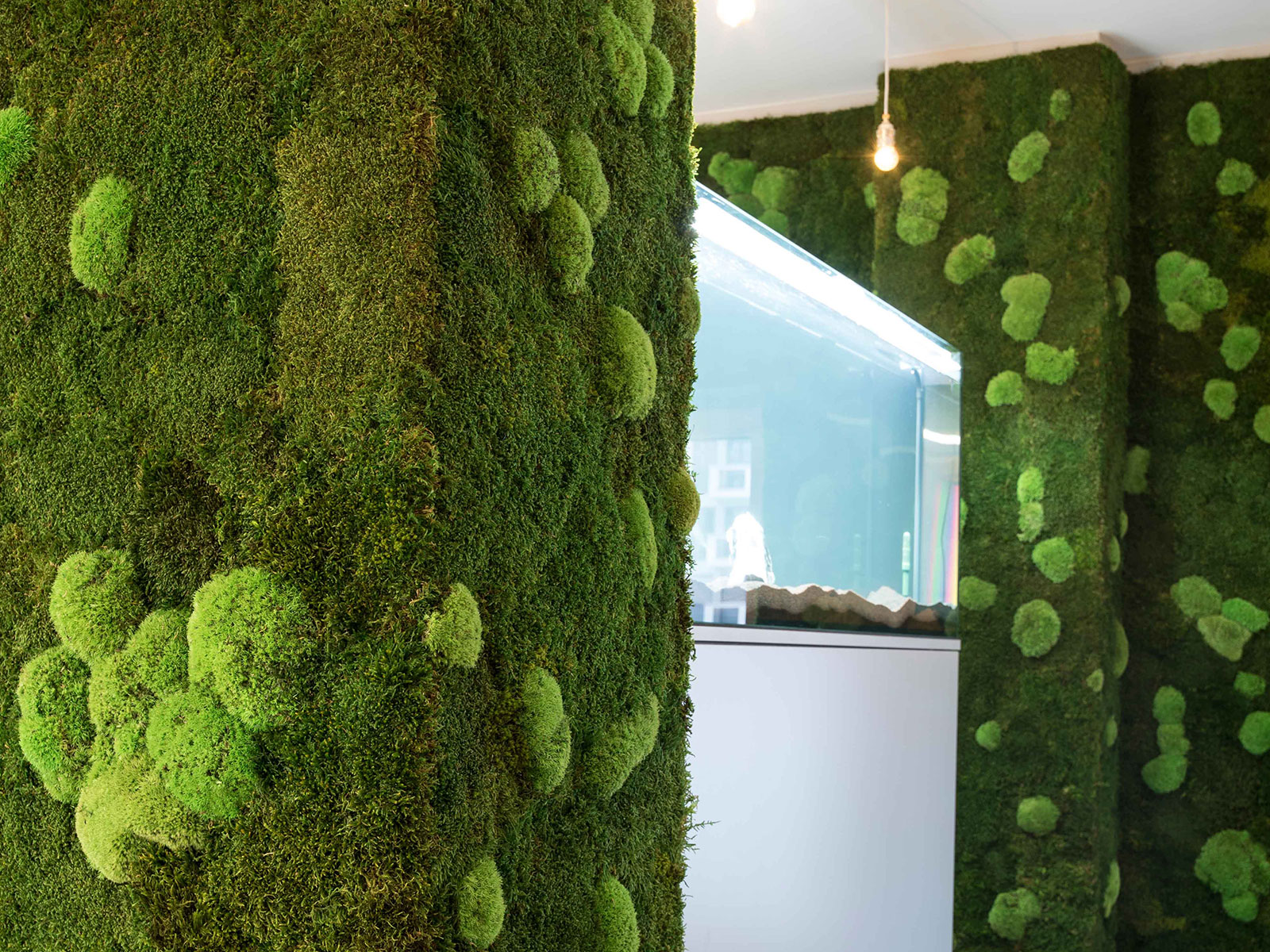 mooswand selber bauen moss wall diy solution from stylegreen moos terrarium idee inspiration. Black Bedroom Furniture Sets. Home Design Ideas