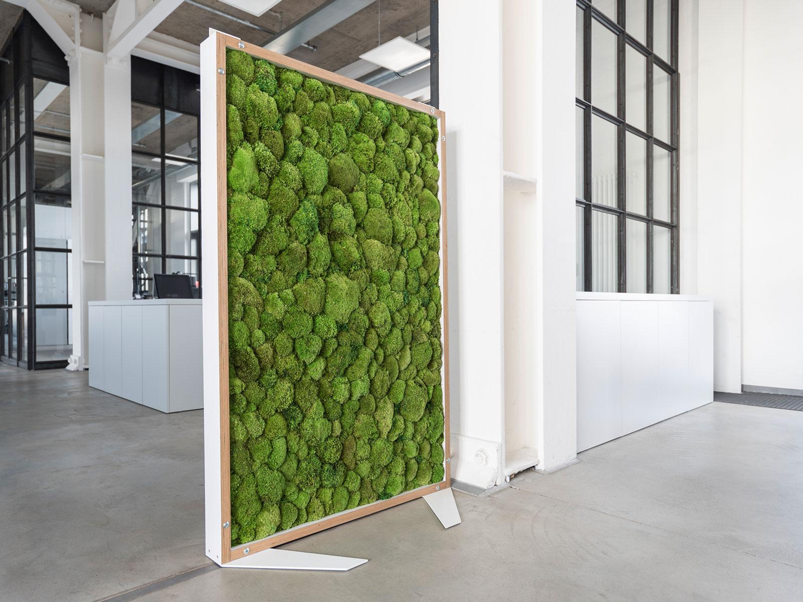moosw nde von hydroflora sthetischer schallschutz der berzeugt hydroflora gmbh. Black Bedroom Furniture Sets. Home Design Ideas