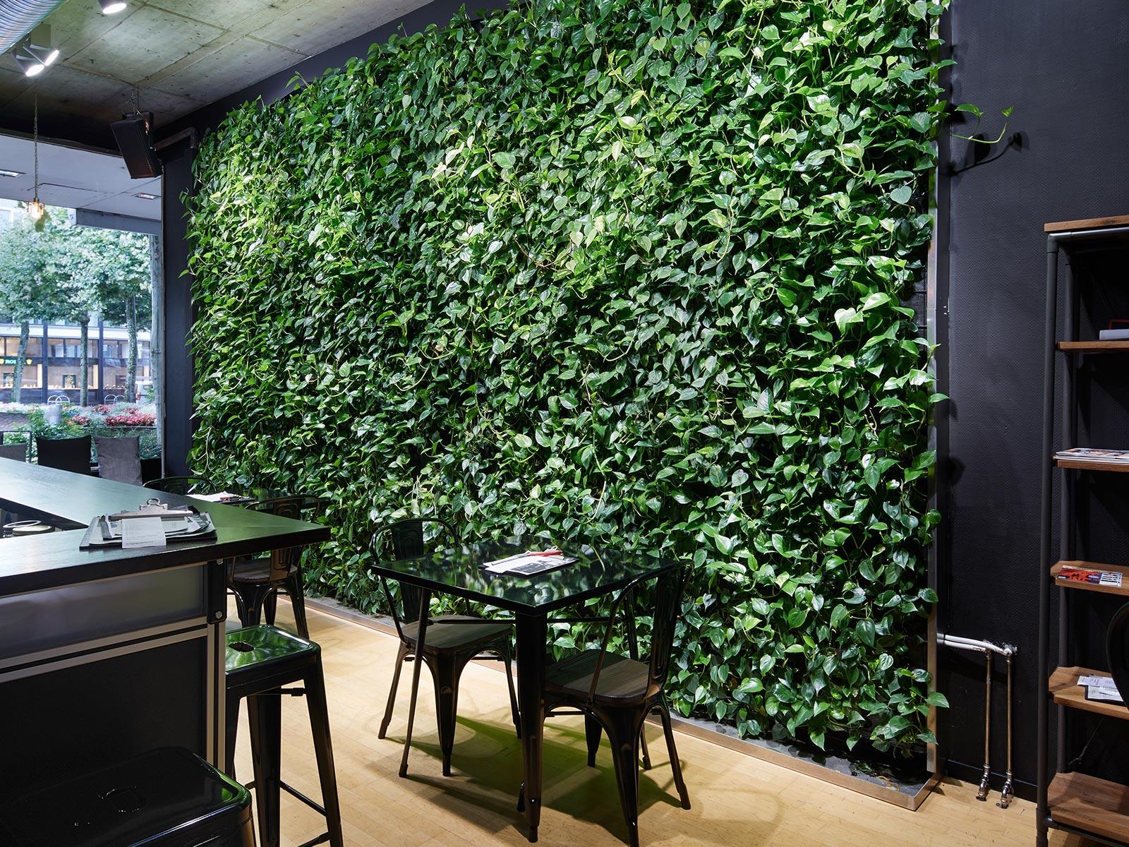 gutleut caf und bar mainz hydroflora gmbh. Black Bedroom Furniture Sets. Home Design Ideas