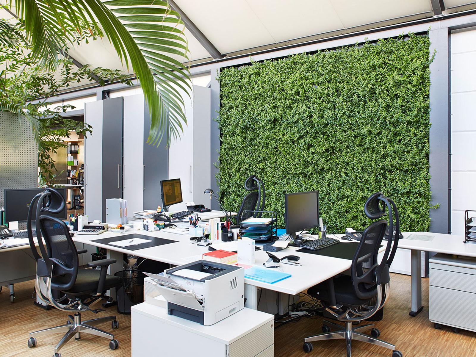 Pflanzenwand Bauen pflanzenwände hydroflora modular variabel individuell